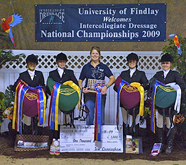 equine teams and clubs image