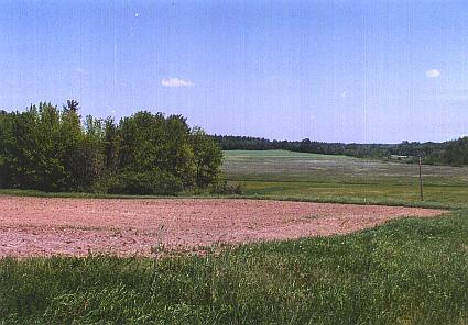 kingman farm photo