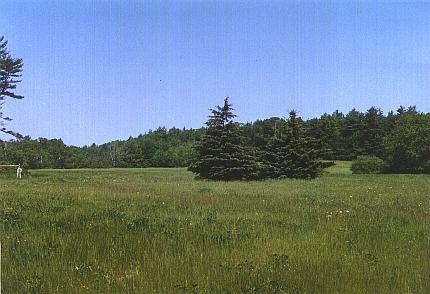Thompson Farm fields