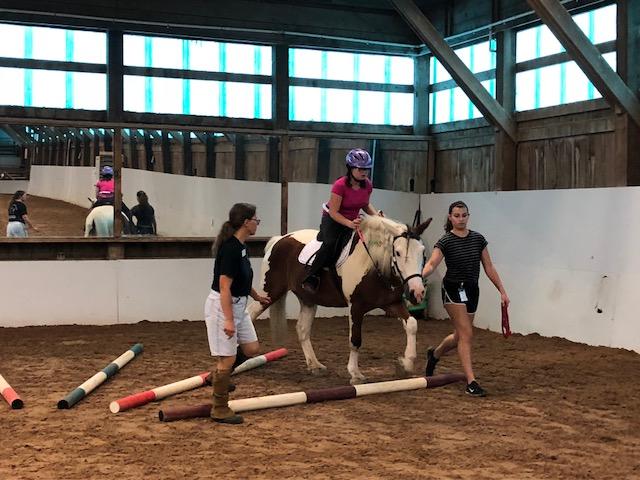 Bailey UNH Equine Poles