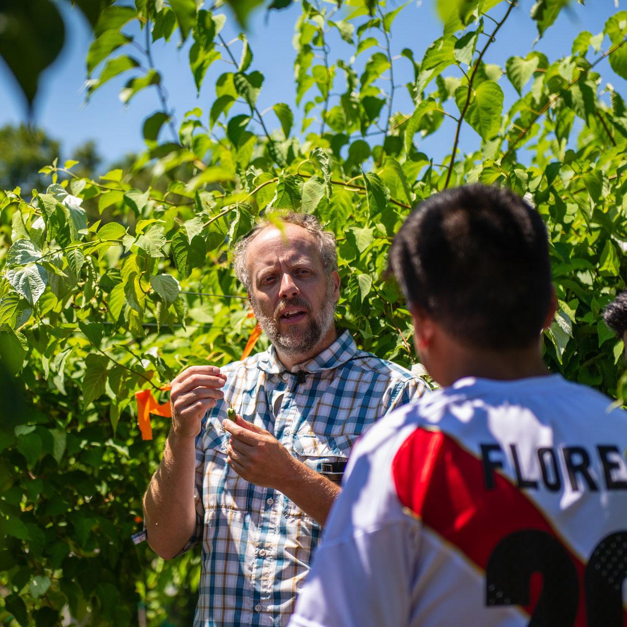 Dr. Iago Hale demonstrating kiwiberries