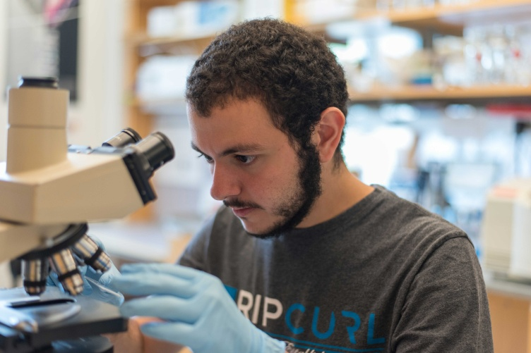 Yusuf Ebrahim '17 peers through a microscope.