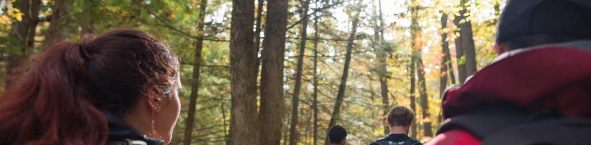 Students walking in woods