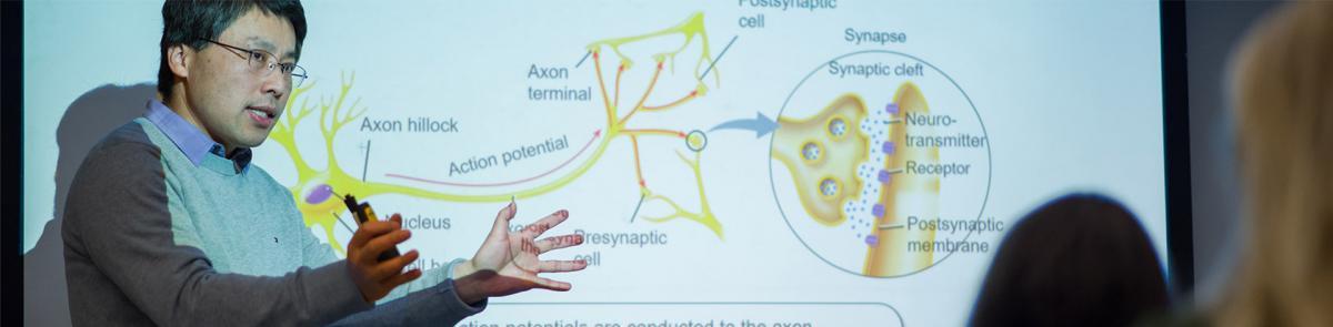 A lecture in BMCB