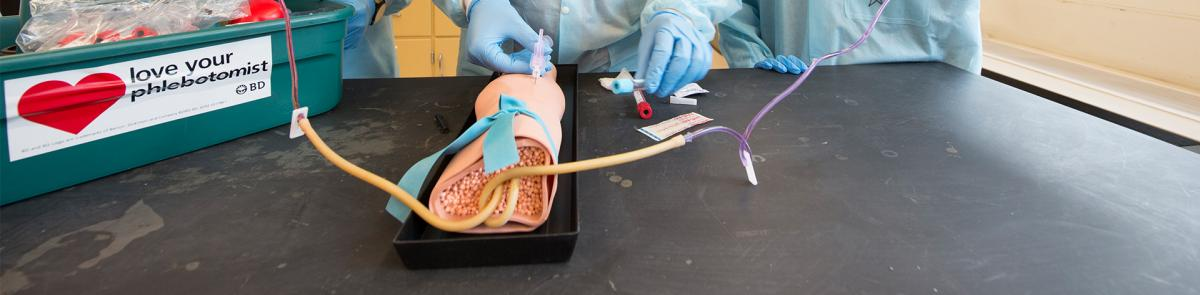 Biomedical Science Minor