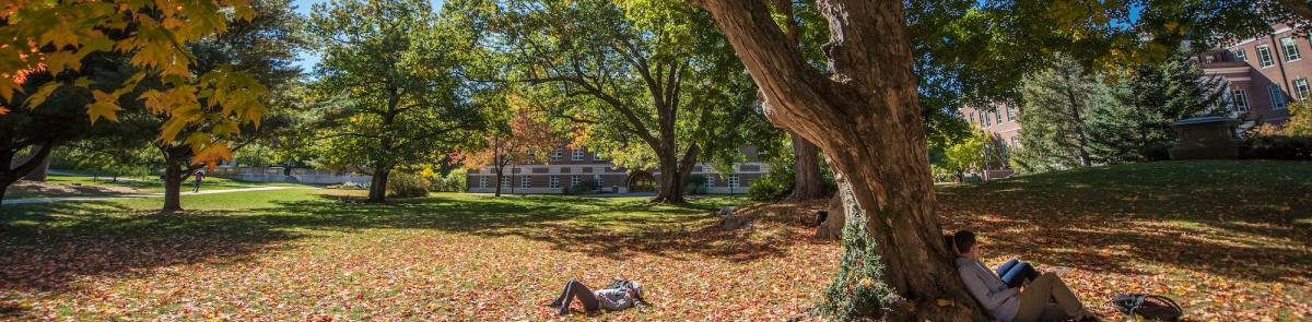 UNH Campus during fall, students sitting under tree