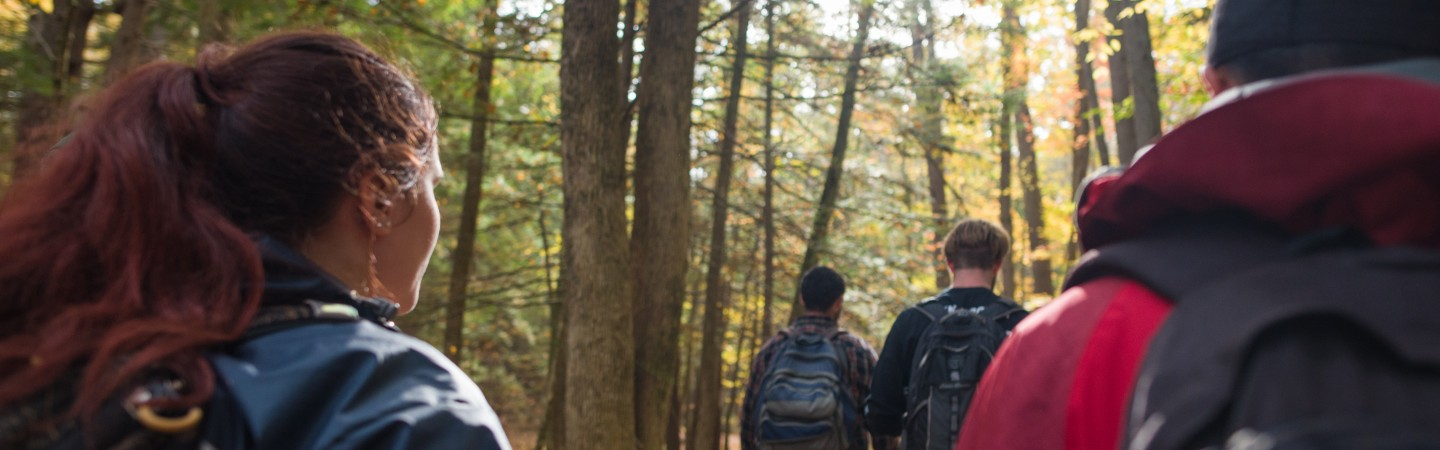 Students walking in college woods at UNH