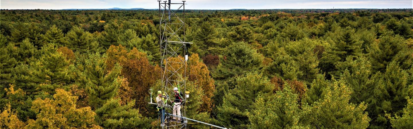 Researchers on a weather tower at Thompson Forest