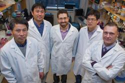 CIBBR Researchers UNH