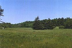 NHAES Thompson field