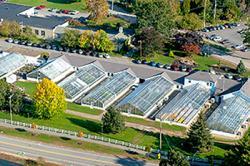 Macfarlane Greenhouses