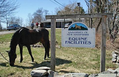 unh equine facilities