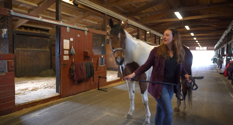 UNH equine science major Amber McElhinney '19