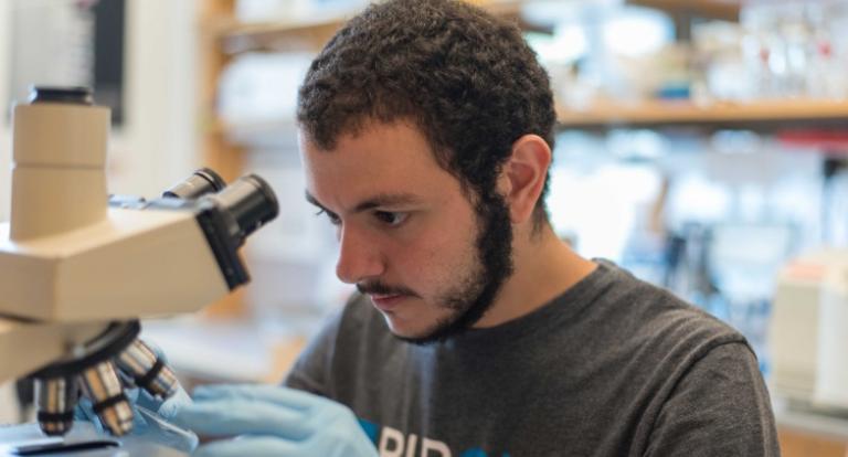 Yusuf Ebrahim '17 peers through a microscope.