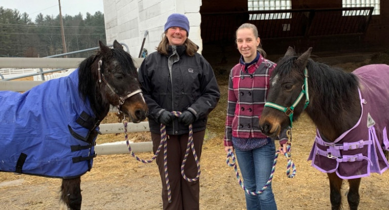 UNH Equine Program Helps Rehabilitate Two Rescued Ponies