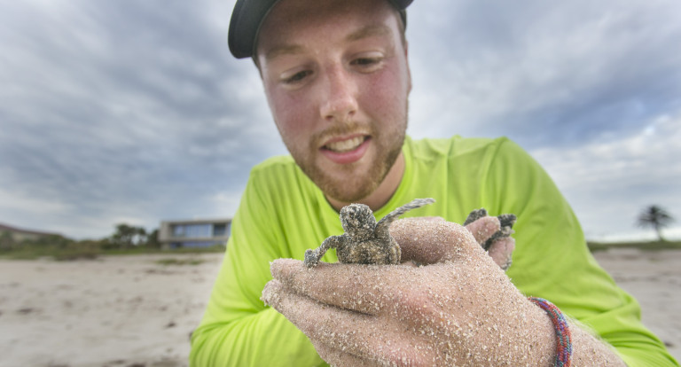 Grey Miller '20 holds baby sea turtle
