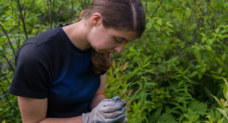 UNH wildlife and conservation biology major Jenna O'del
