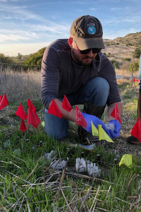 Eric Morrison doing fieldwork